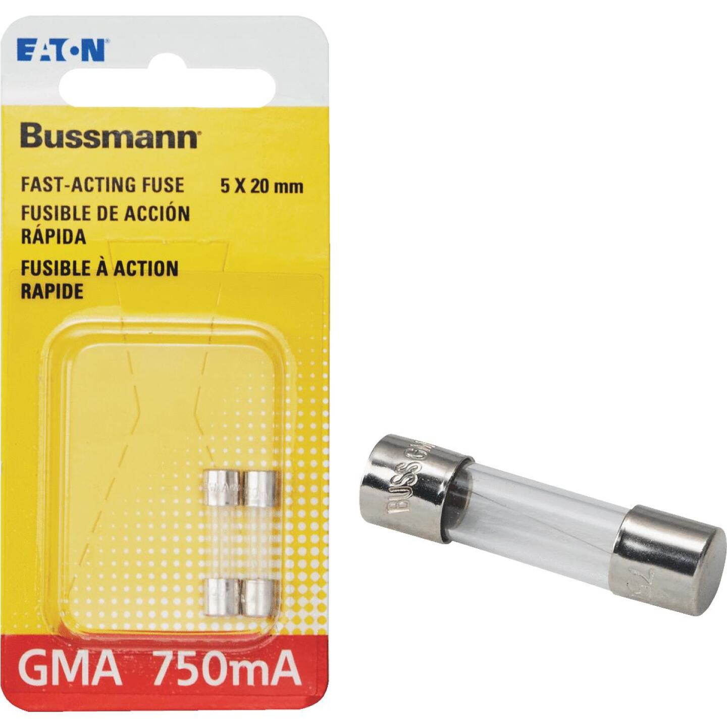 Bussmann 750A GMA Glass Tube Electronic Fuse (2-Pack) Image 1