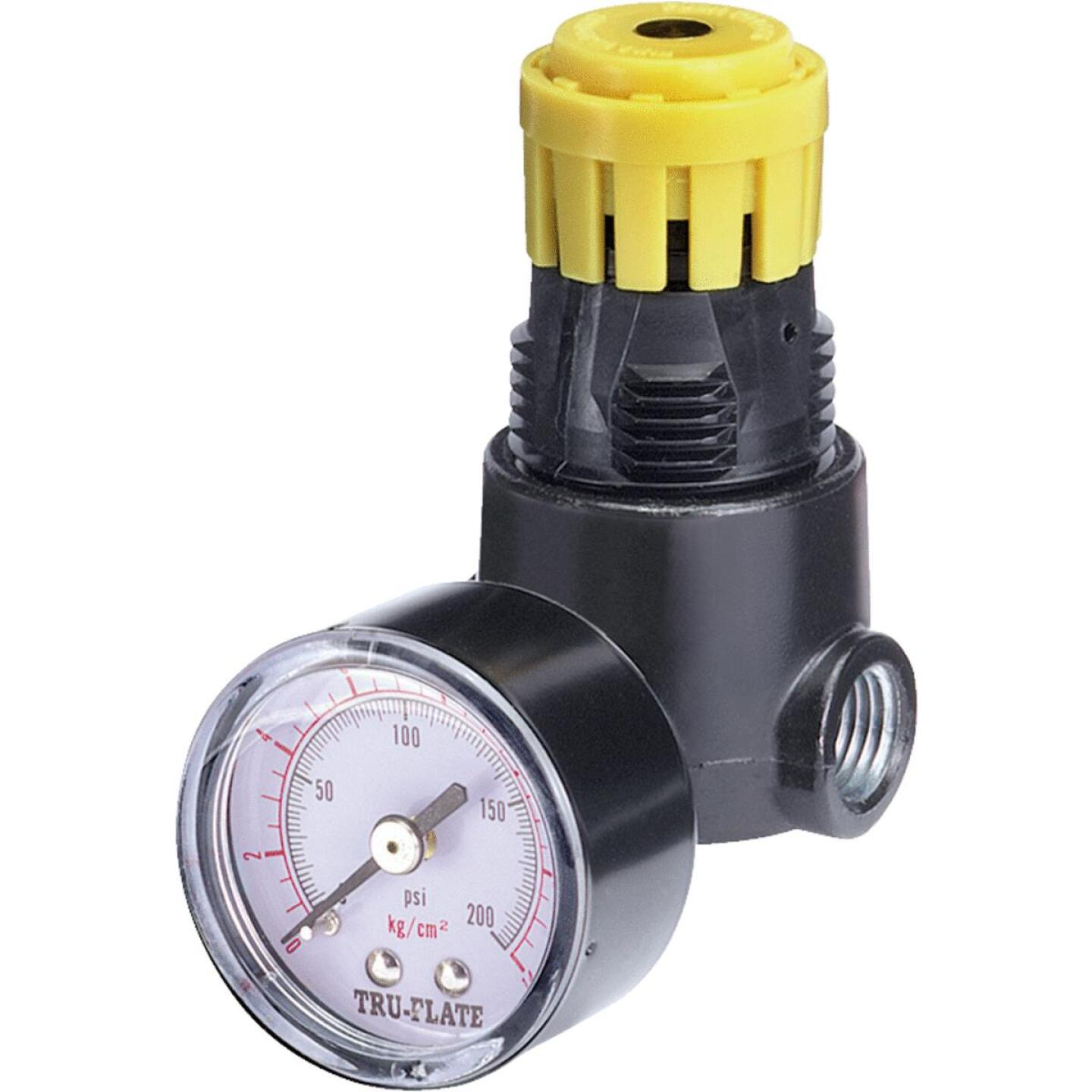 Tru-Flate 1/4 In. NPT 250 PSI Mini Pressure Regulator Image 1