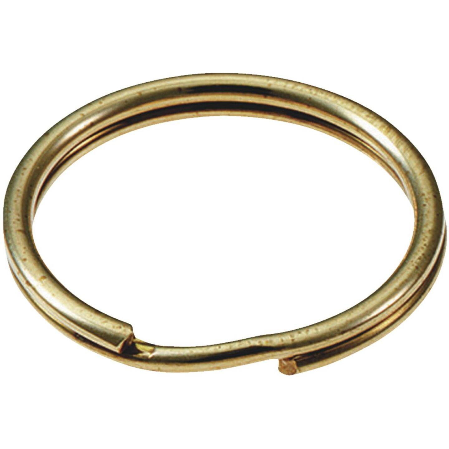 Lucky Line Tempered Steel Nickel-Plated 3 In. Key Ring Image 1