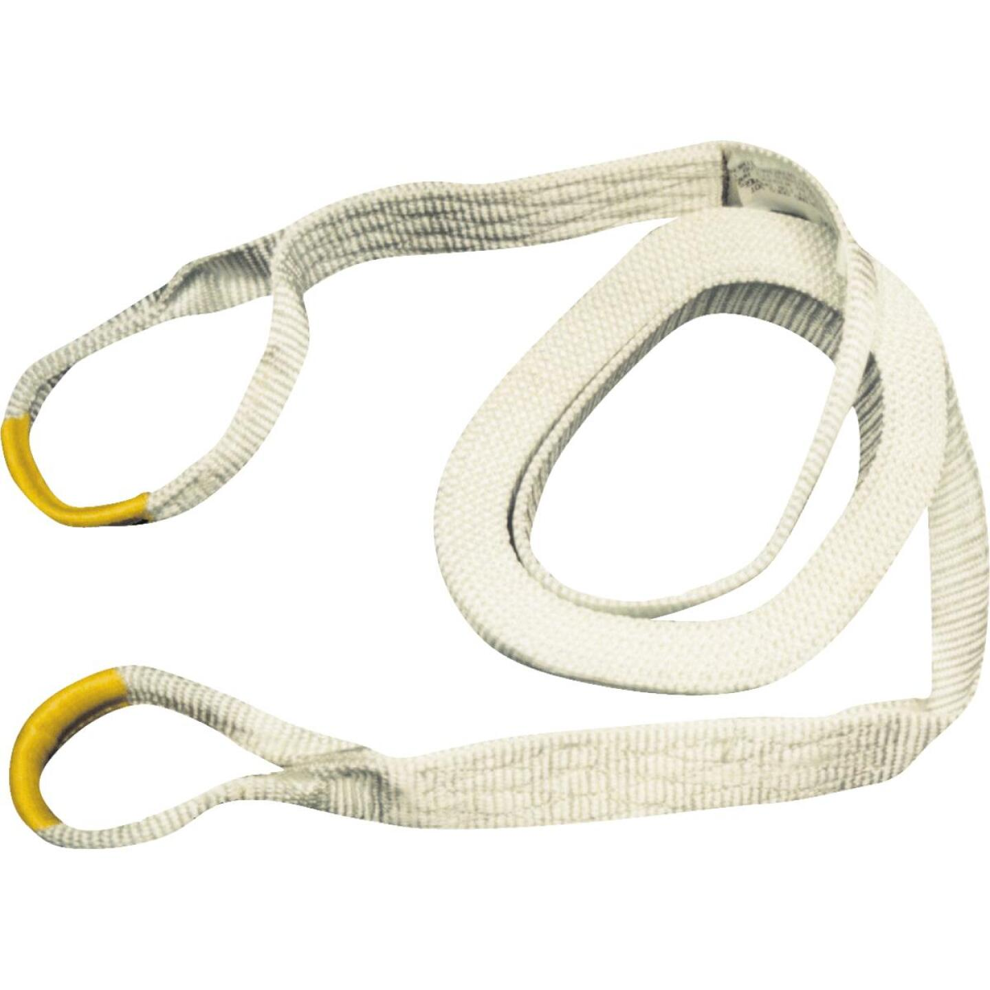 Erickson 2 In. x 20 Ft. 9000 Lb. Polyester Recovery Tow Strap, White Image 1