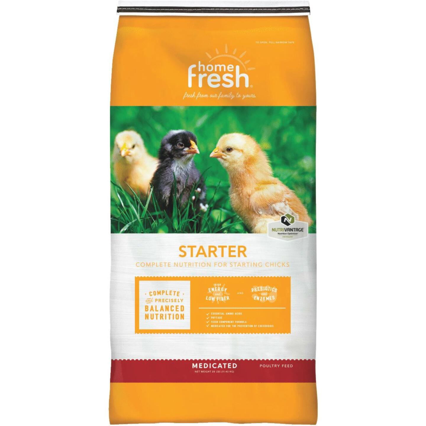 Blue Seal Home Fresh Chicken Starter 25 Lb. Chicken Feed Image 1