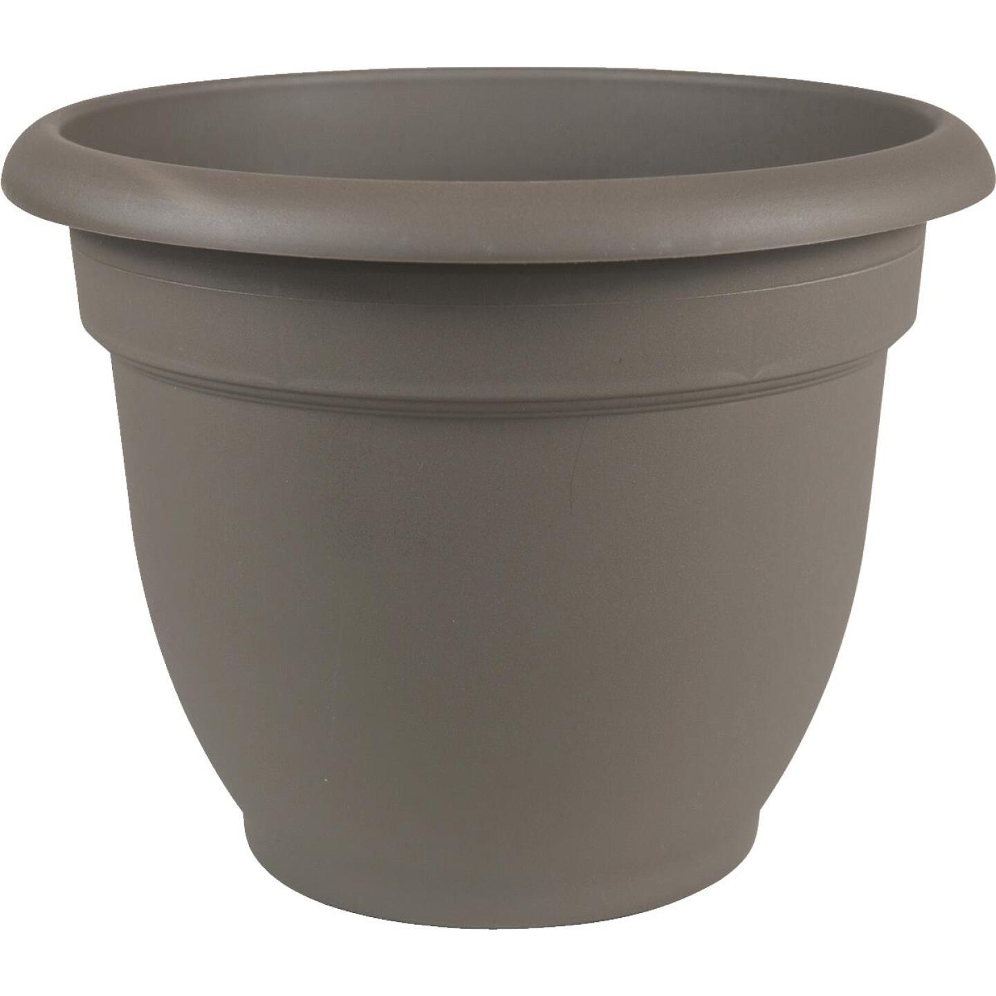 Bloem Ariana 8.8 In. H x 8 In. Dia. Plastic Self Watering Charcoal Planter Image 1