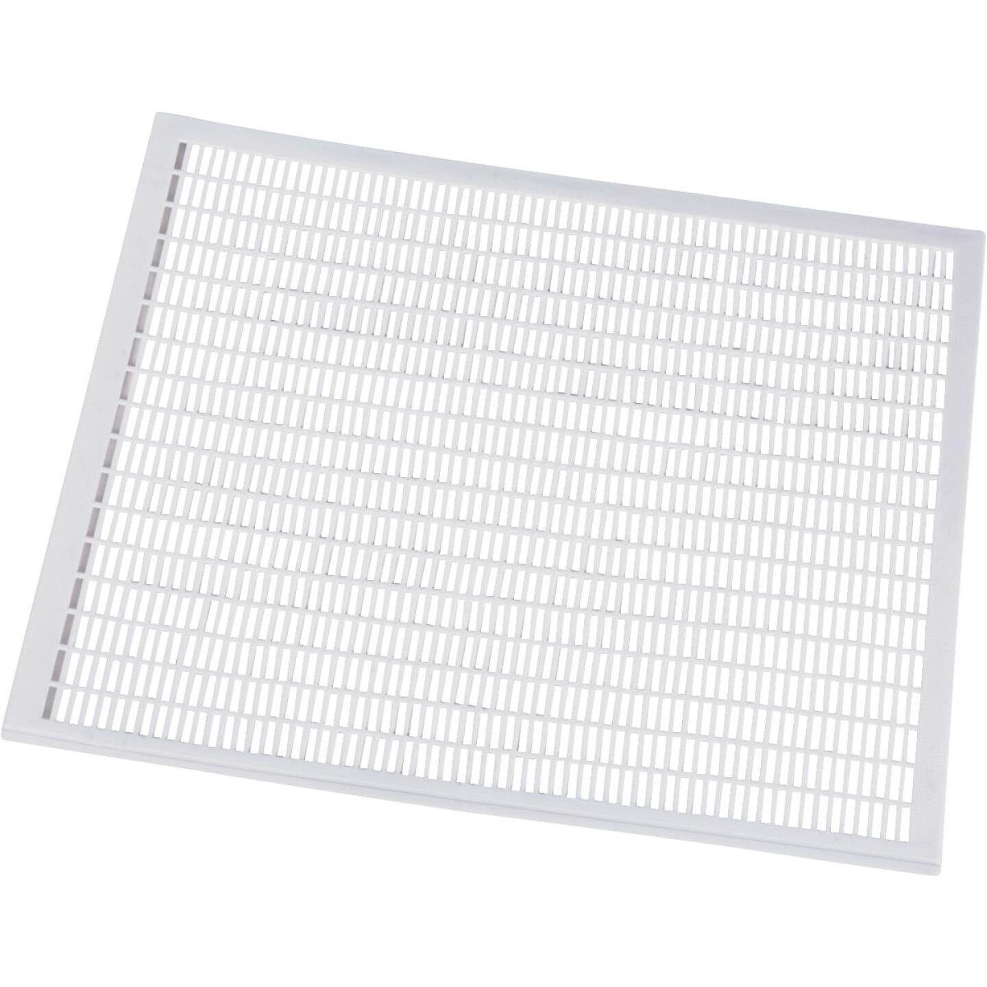Little Giant 16.5 In. W. x 0.125 In. H. x 20 In. L. Plastic Queen Excluder Beehive Tool Image 1