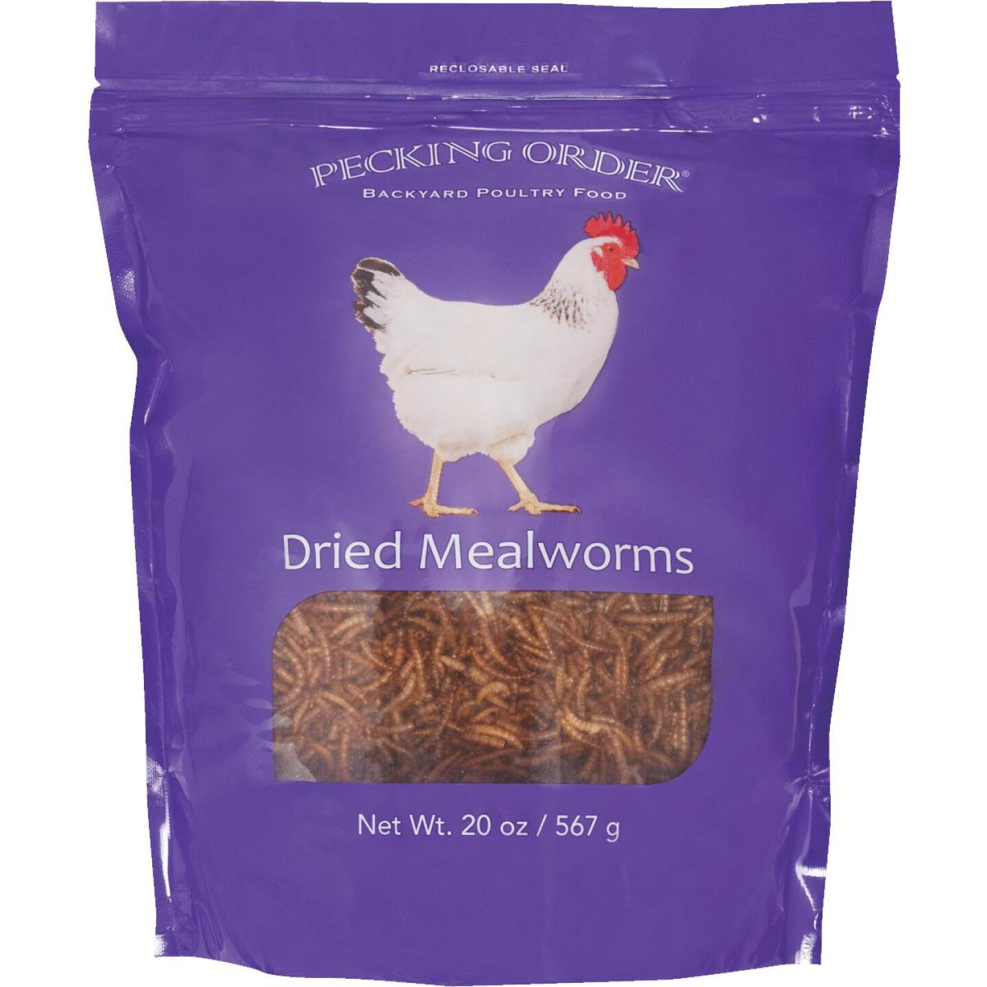 Pecking Order 20 Oz. Dried Mealworms Chicken Treat Image 1