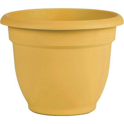 Bloem Ariana 6.5 In. H. x 6 In. Dia. Plastic Self Watering Earthy Yellow Planter