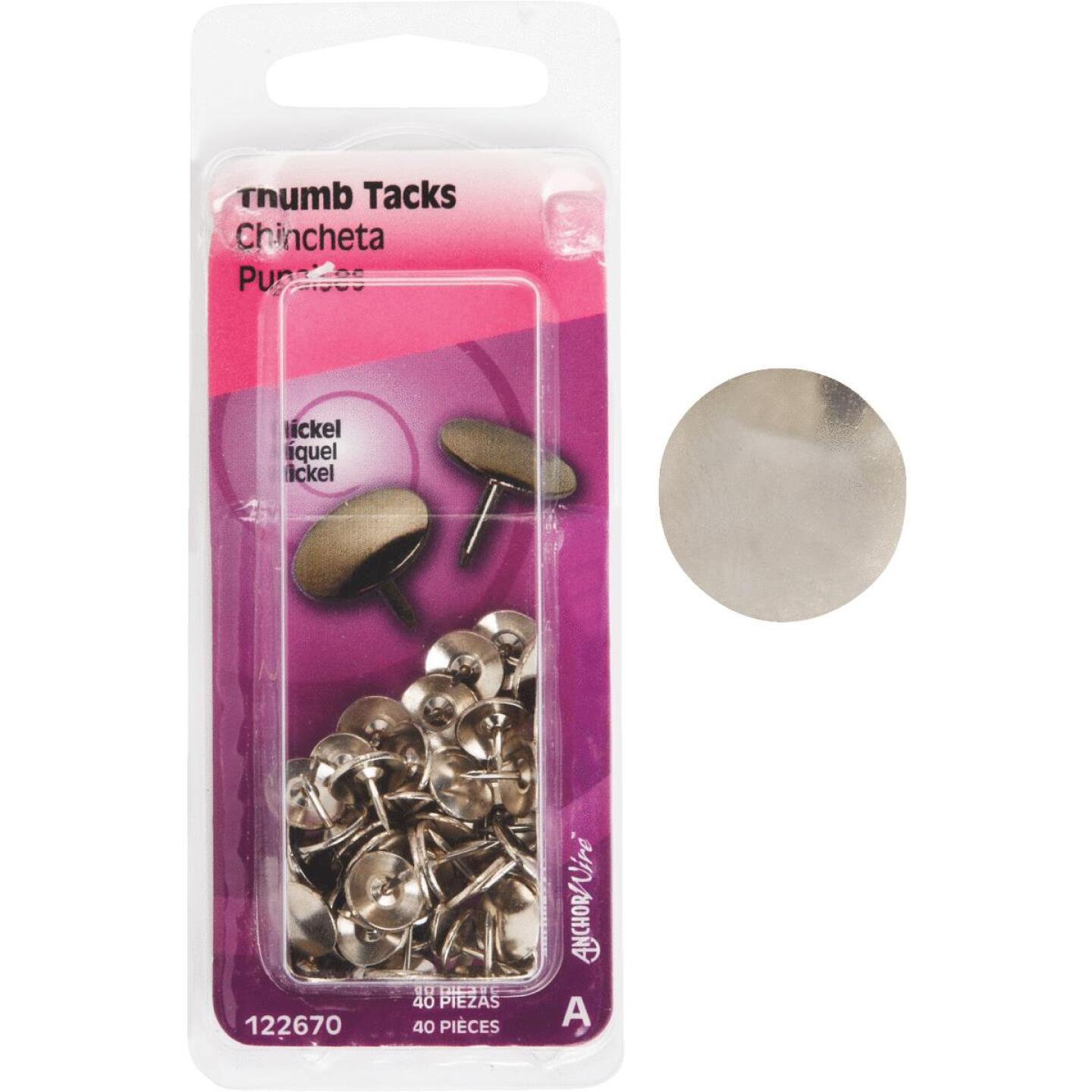 Hillman Anchor Wire Nickel 23/64 In. x 15/64 In. Thumb Tack (40 Ct.) Image 1