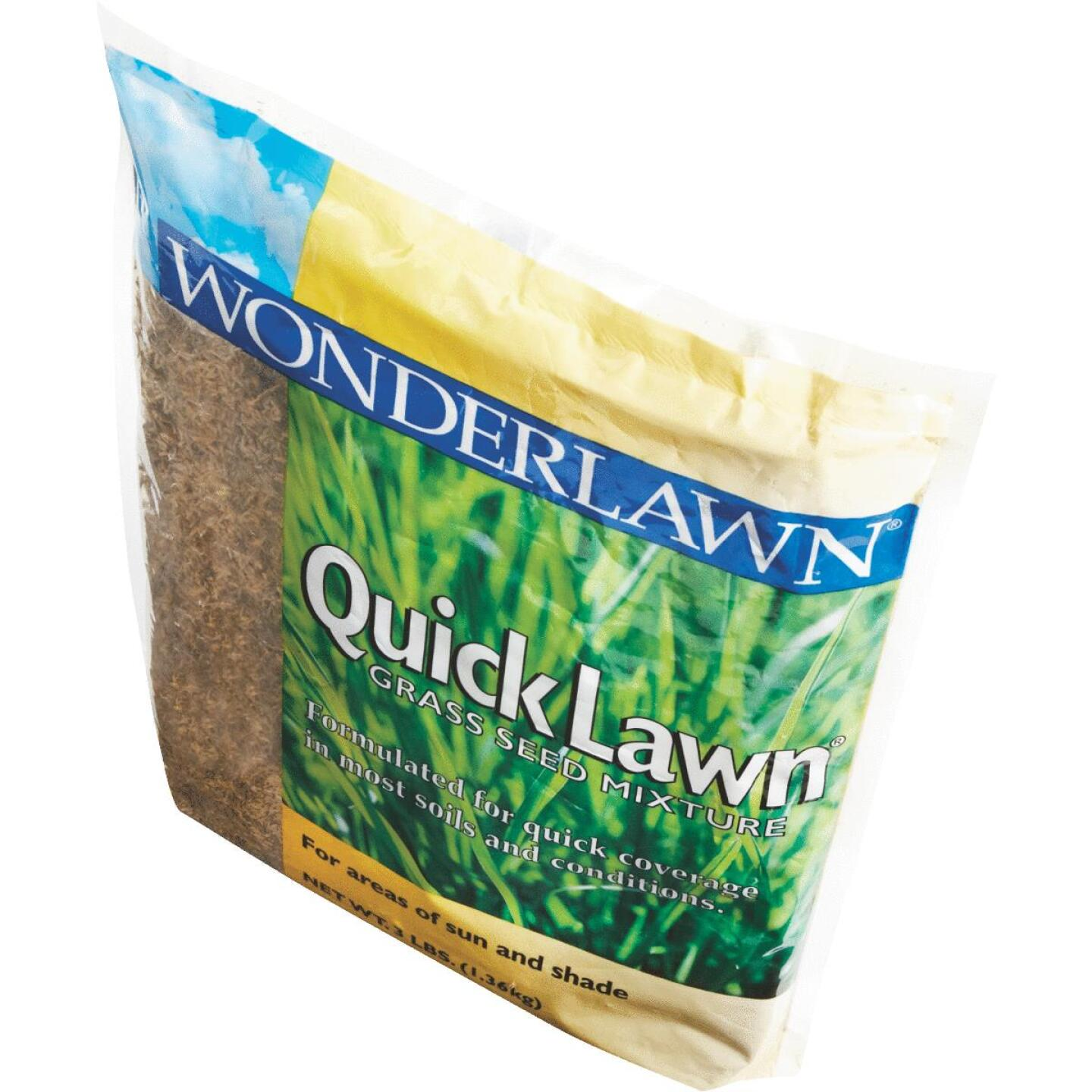 Wonderlawn Quick Lawn 3 Lb. 900 Sq. Ft. Coverage Annual & Perennial Ryegrass Grass Seed Image 3